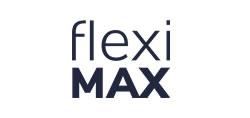 fleximax_logo_ws